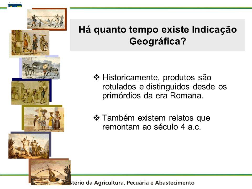 Há quanto tempo existe Indicação Geográfica
