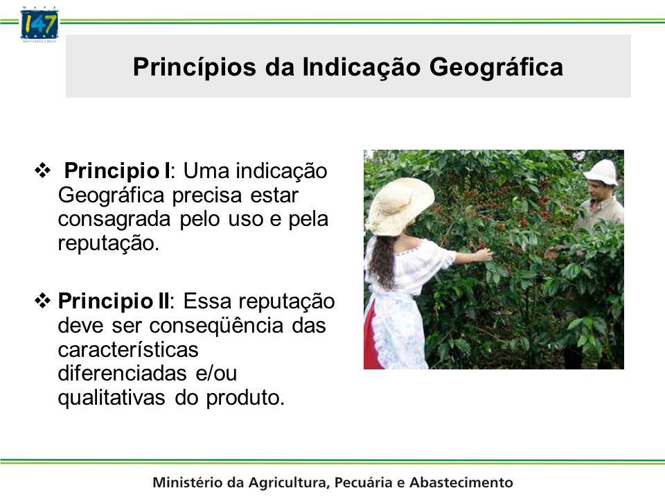 Princípios da Indicação Geográfica