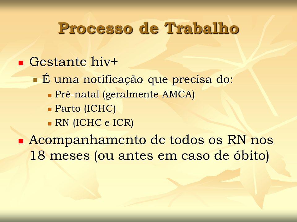 Processo de Trabalho Gestante hiv+