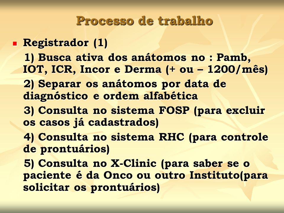 Processo de trabalho Registrador (1)