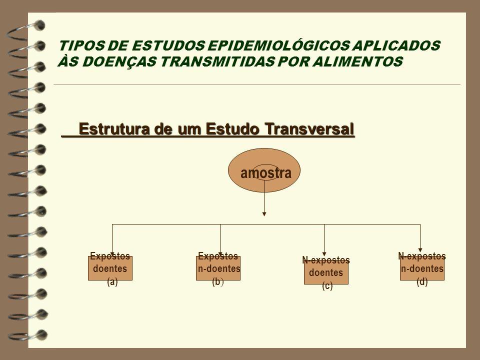 Estrutura de um Estudo Transversal