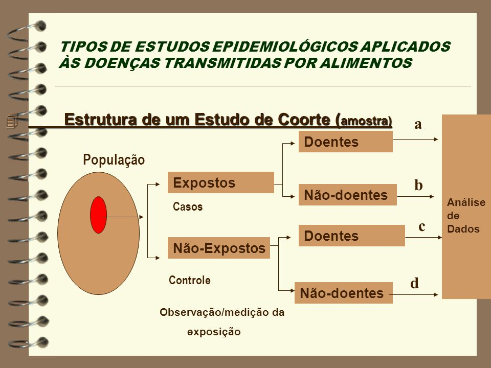 Estrutura de um Estudo de Coorte (amostra) a
