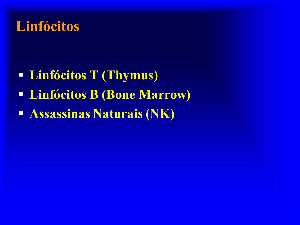 Linfócitos Linfócitos T (Thymus) Linfócitos B (Bone Marrow)