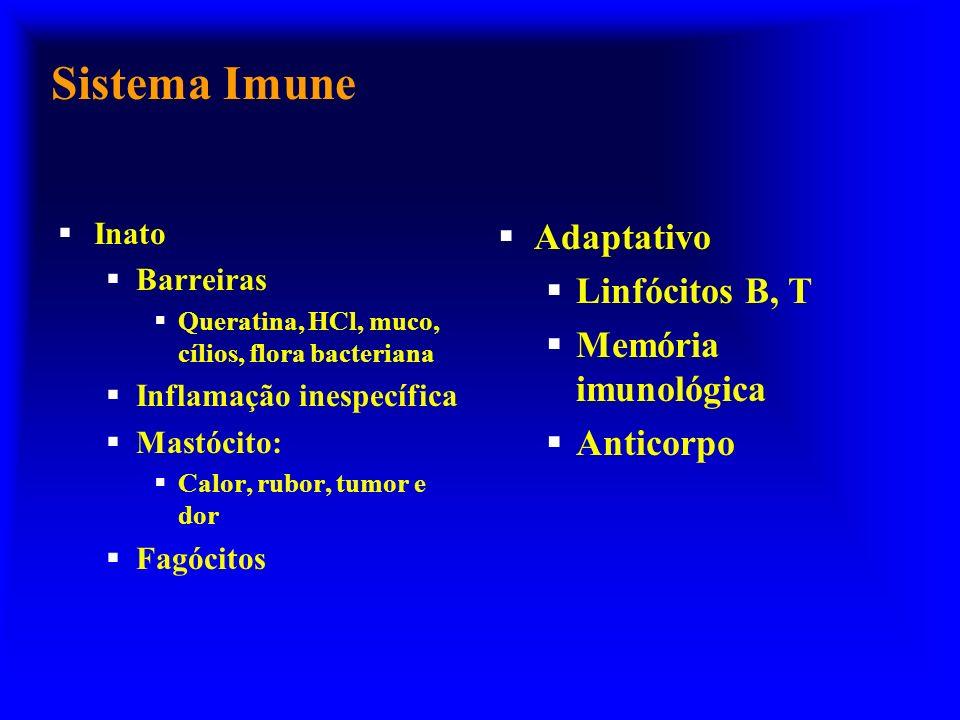 Sistema Imune Adaptativo Linfócitos B, T Memória imunológica Anticorpo