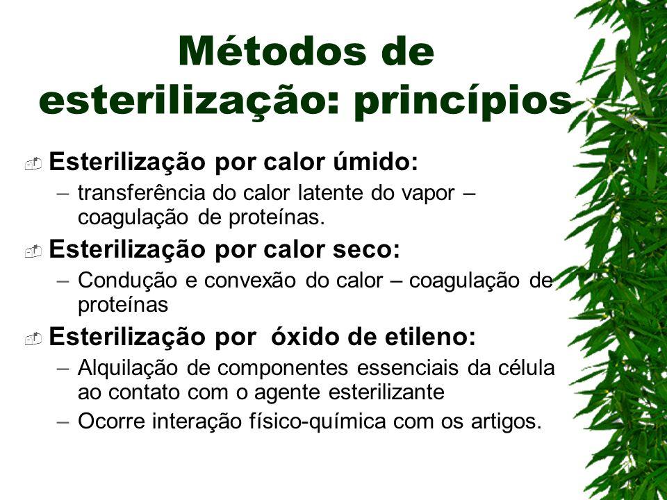 Métodos de esterilização: princípios