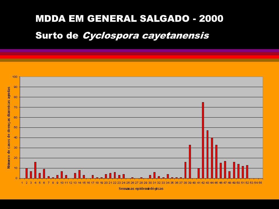 MDDA EM GENERAL SALGADO - 2000