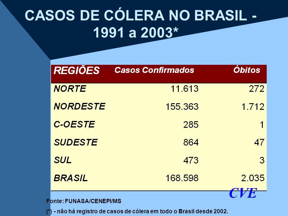 CASOS DE CÓLERA NO BRASIL - 1991 a 2003*