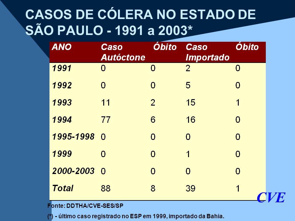 CASOS DE CÓLERA NO ESTADO DE SÃO PAULO - 1991 a 2003*