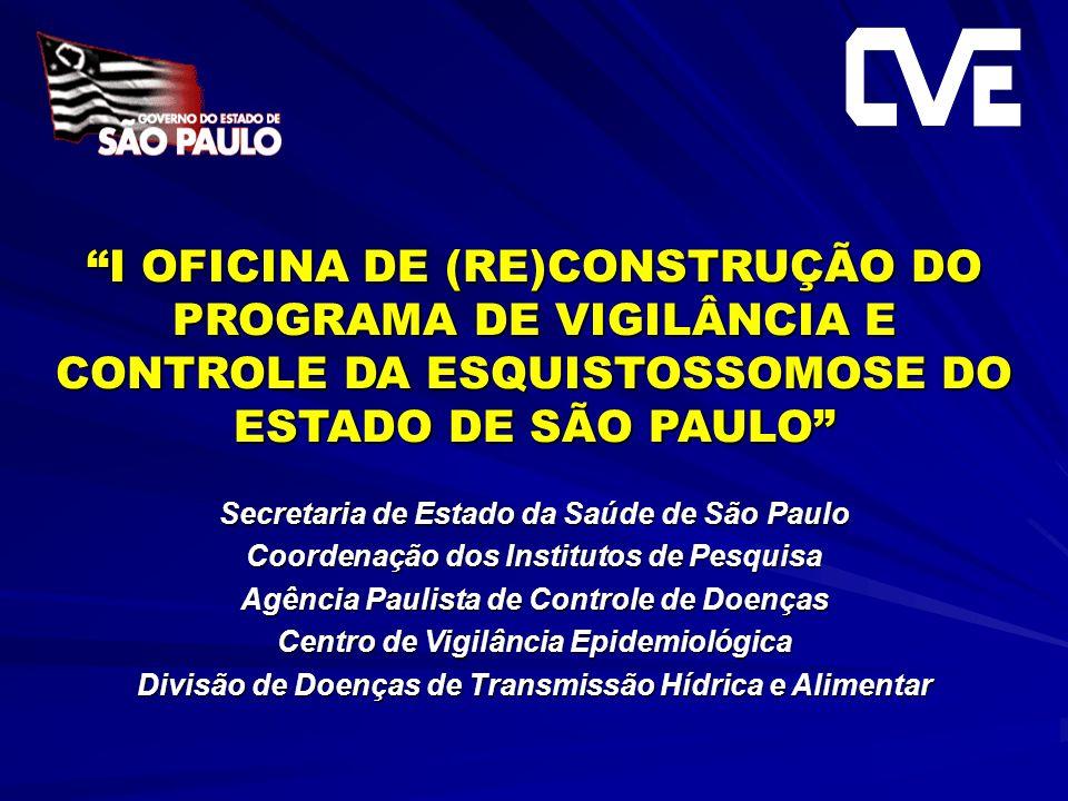 I OFICINA DE (RE)CONSTRUÇÃO DO PROGRAMA DE VIGILÂNCIA E CONTROLE DA ESQUISTOSSOMOSE DO ESTADO DE SÃO PAULO