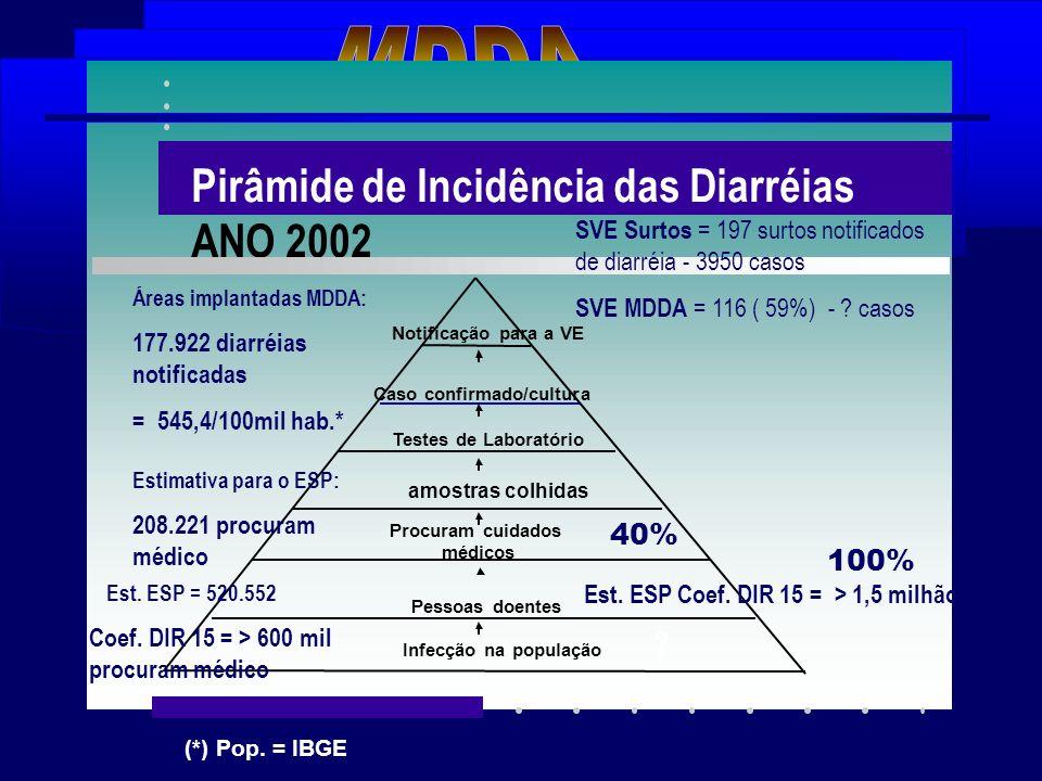 MDDA Pirâmide de Incidência das Diarréias ANO 2002 40% 100%