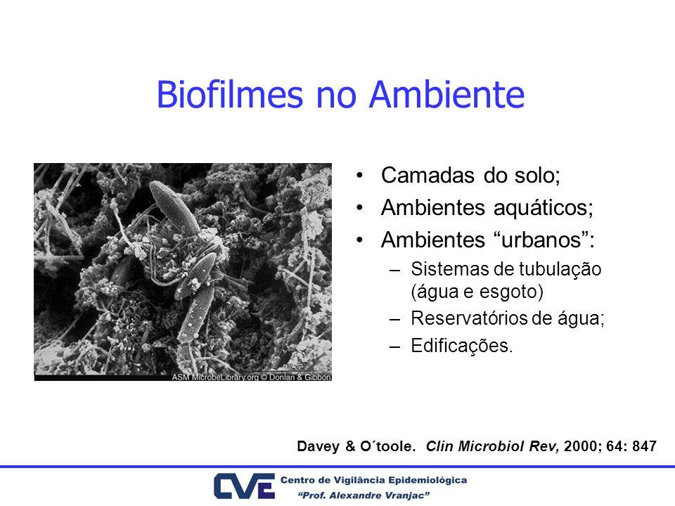 Biofilmes no Ambiente Camadas do solo; Ambientes aquáticos;