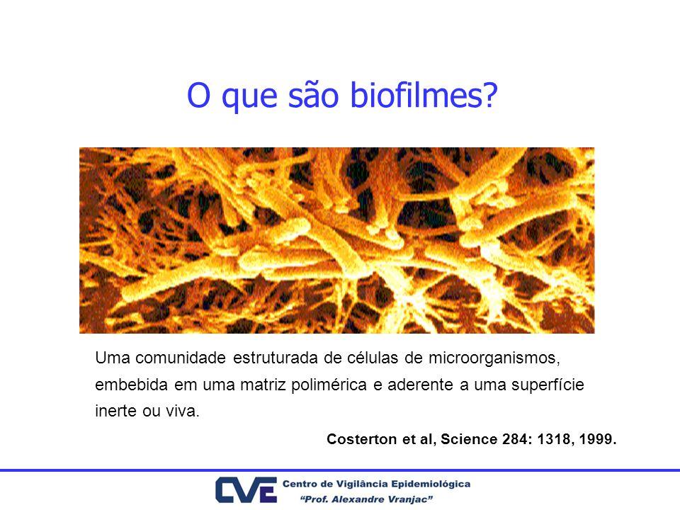 O que são biofilmes