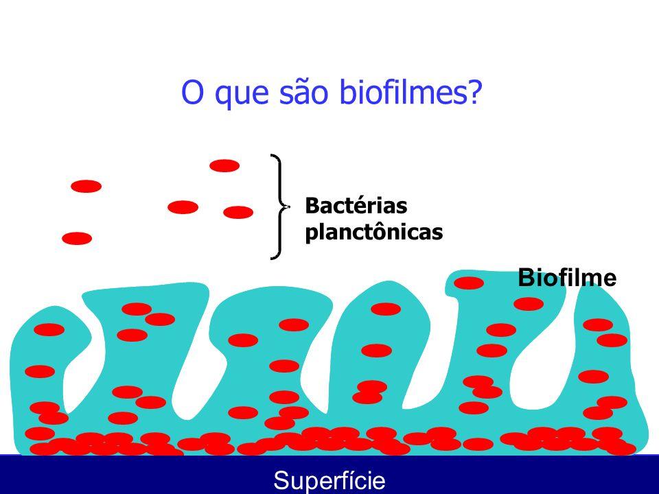 O que são biofilmes Bactérias planctônicas Biofilme Superfície