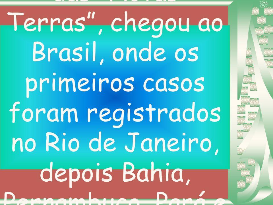 Com a descoberta das Novas Terras , chegou ao Brasil, onde os primeiros casos foram registrados no Rio de Janeiro, depois Bahia, Pernambuco, Pará e depois São Paulo.