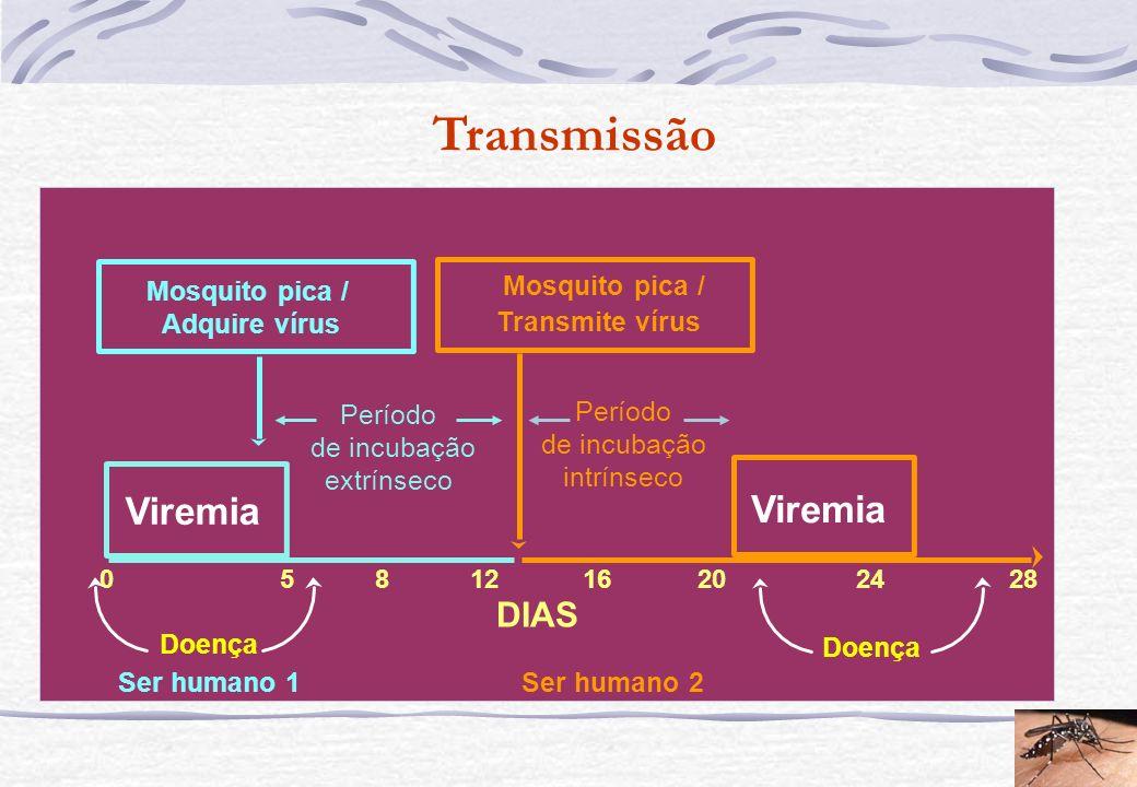 Transmissão Viremia Viremia DIAS Mosquito pica / Mosquito pica /