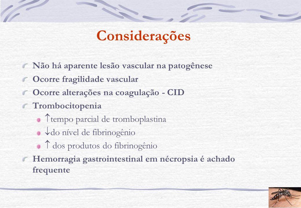 Considerações Não há aparente lesão vascular na patogênese