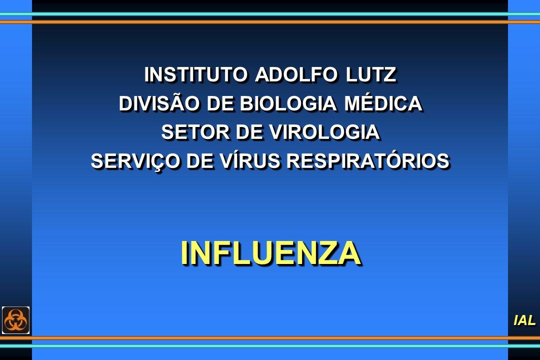 DIVISÃO DE BIOLOGIA MÉDICA SERVIÇO DE VÍRUS RESPIRATÓRIOS