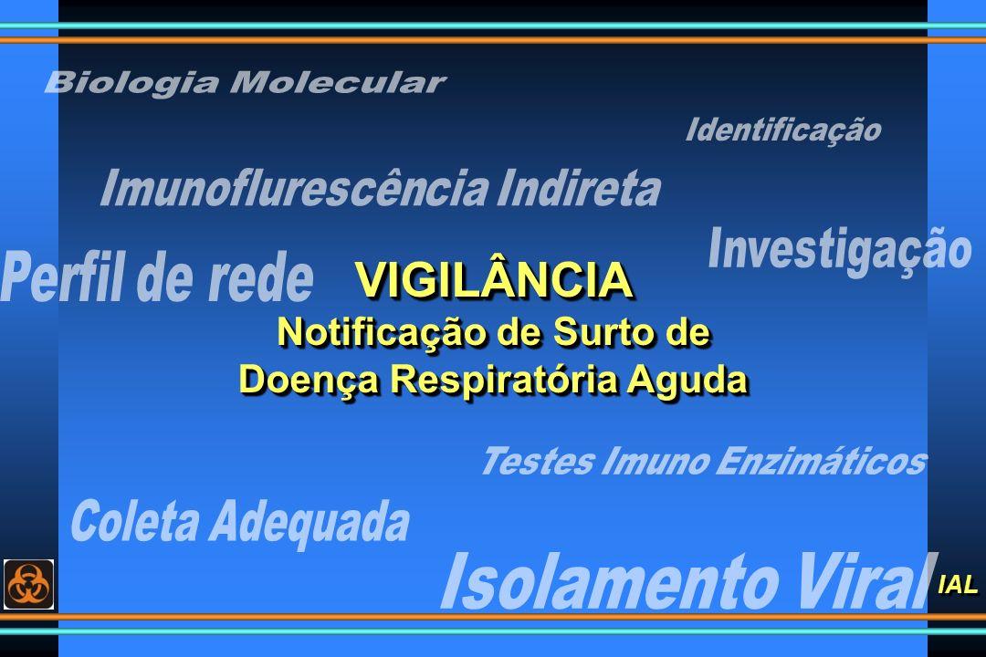 VIGILÂNCIA Notificação de Surto de Doença Respiratória Aguda
