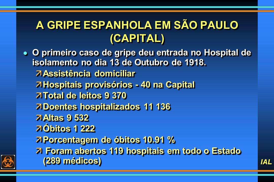 A GRIPE ESPANHOLA EM SÃO PAULO (CAPITAL)