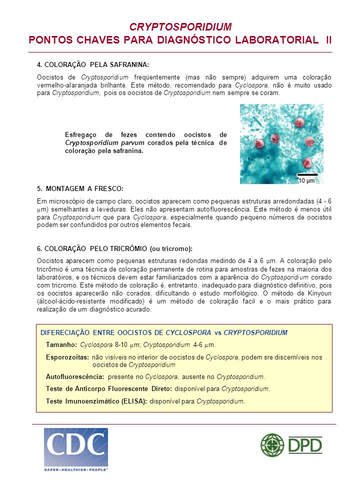 CRYPTOSPORIDIUM PONTOS CHAVES PARA DIAGNÓSTICO LABORATORIAL II