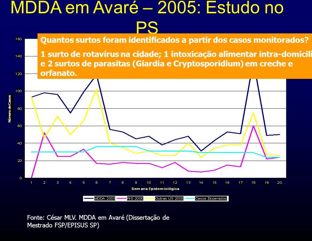 MDDA em Avaré – 2005: Estudo no PS