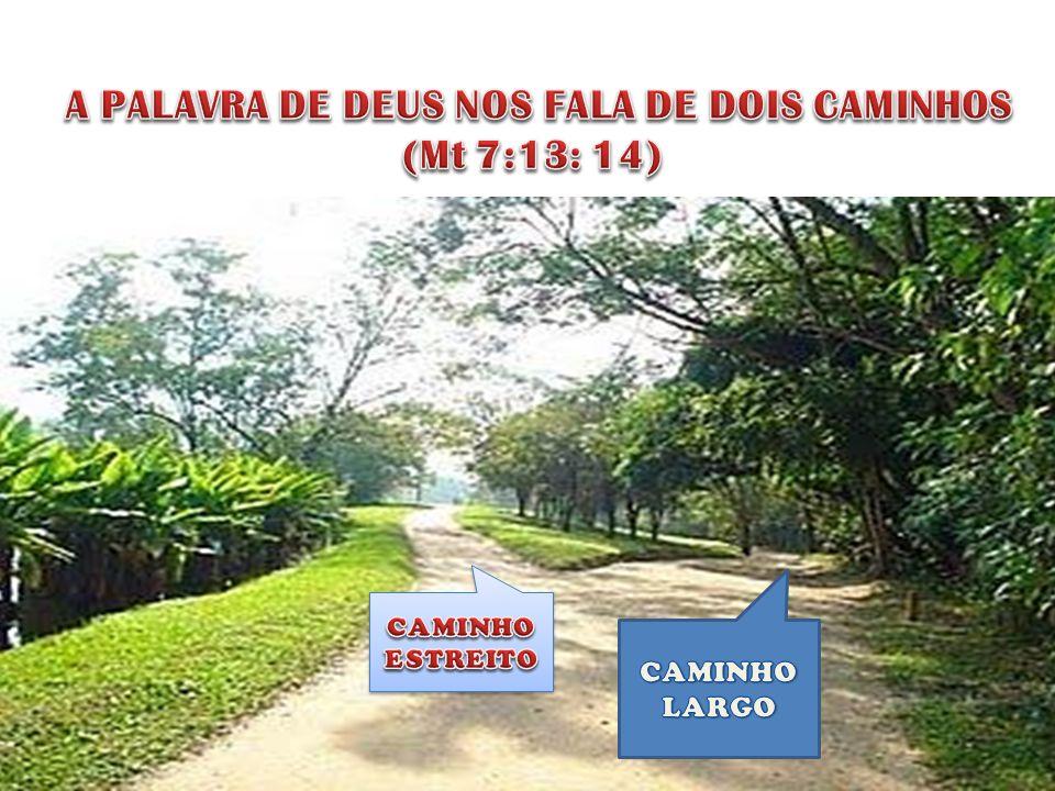 A PALAVRA DE DEUS NOS FALA DE DOIS CAMINHOS (Mt 7:13: 14)