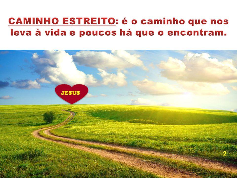 CAMINHO ESTREITO: é o caminho que nos leva à vida e poucos há que o encontram.