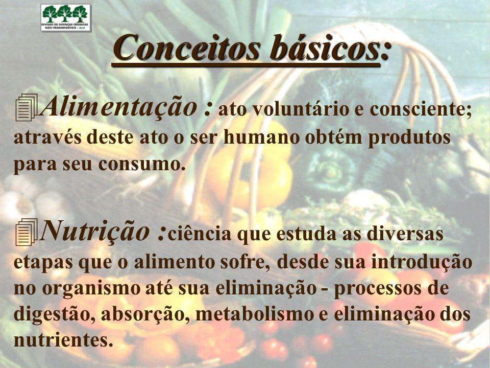 Alimentação : ato voluntário e consciente;