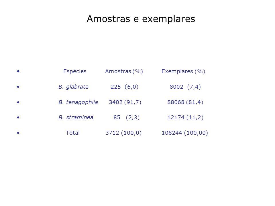 Amostras e exemplares Espécies Amostras (%) Exemplares (%)