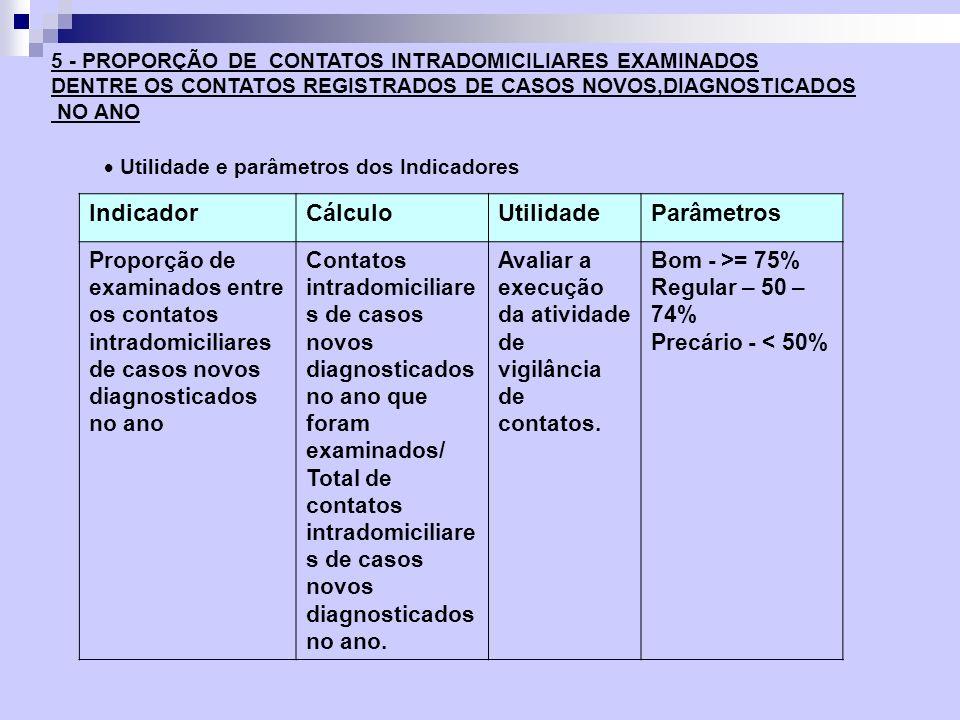 Indicador Cálculo Utilidade Parâmetros