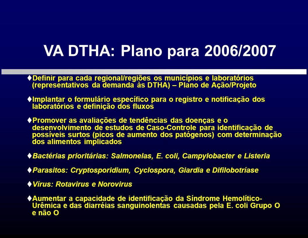 VA DTHA: Plano para 2006/2007