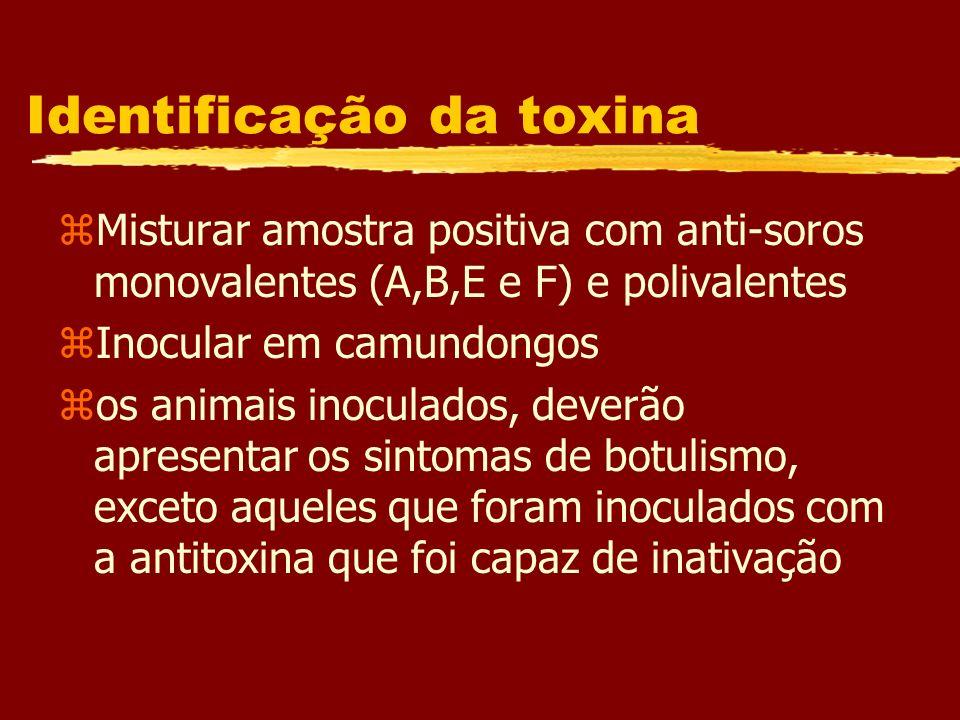 Identificação da toxina