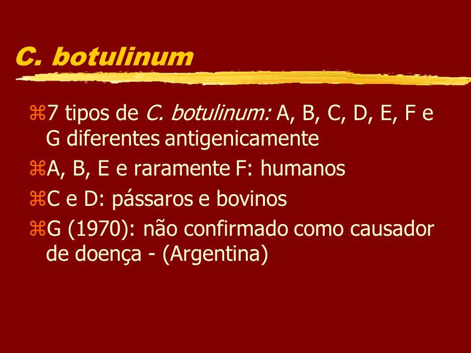 C. botulinum 7 tipos de C. botulinum: A, B, C, D, E, F e G diferentes antigenicamente. A, B, E e raramente F: humanos.