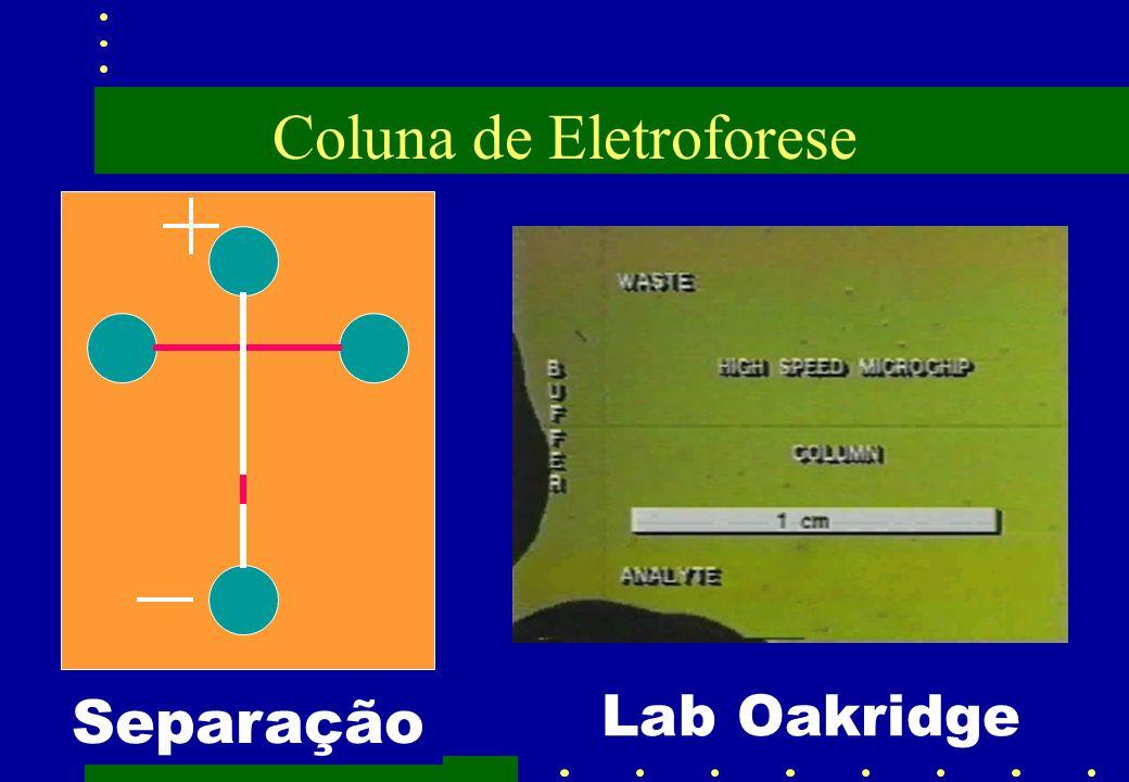 Coluna de Eletroforese