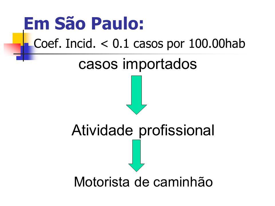 Em São Paulo: casos importados Atividade profissional