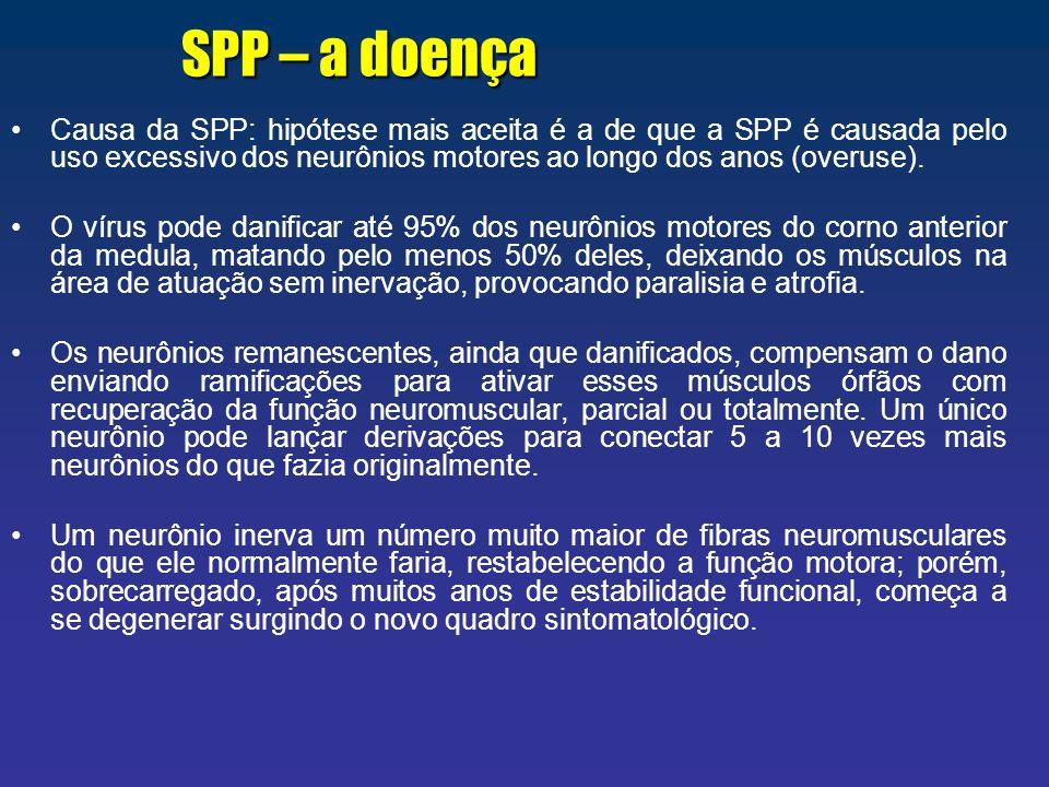 SPP – a doença Causa da SPP: hipótese mais aceita é a de que a SPP é causada pelo uso excessivo dos neurônios motores ao longo dos anos (overuse).