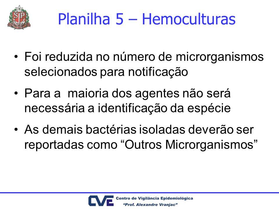 Planilha 5 – Hemoculturas