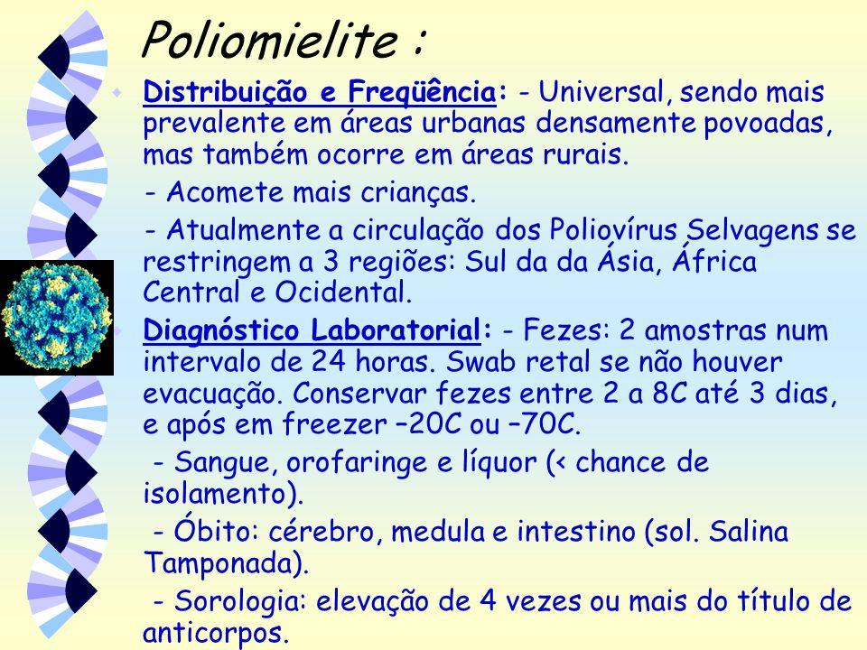 Poliomielite : Distribuição e Freqüência: - Universal, sendo mais prevalente em áreas urbanas densamente povoadas, mas também ocorre em áreas rurais.