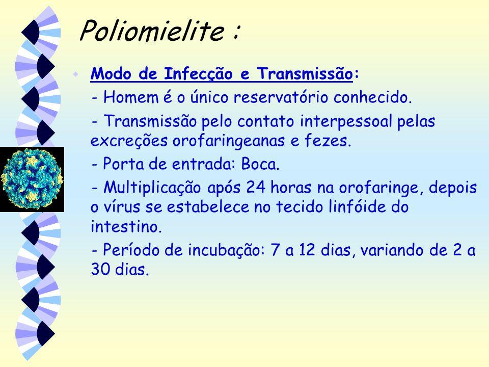 Poliomielite : Modo de Infecção e Transmissão: