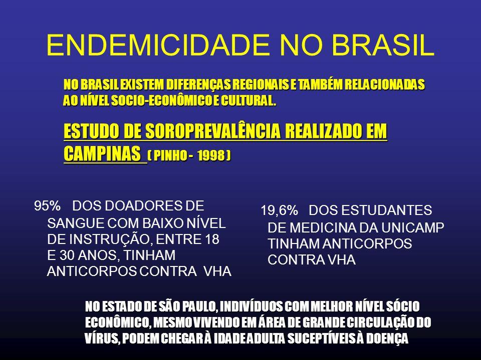 ENDEMICIDADE NO BRASIL