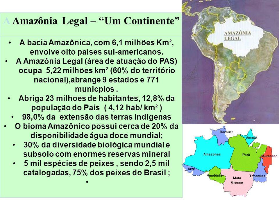 98,0% da extensão das terras indigenas