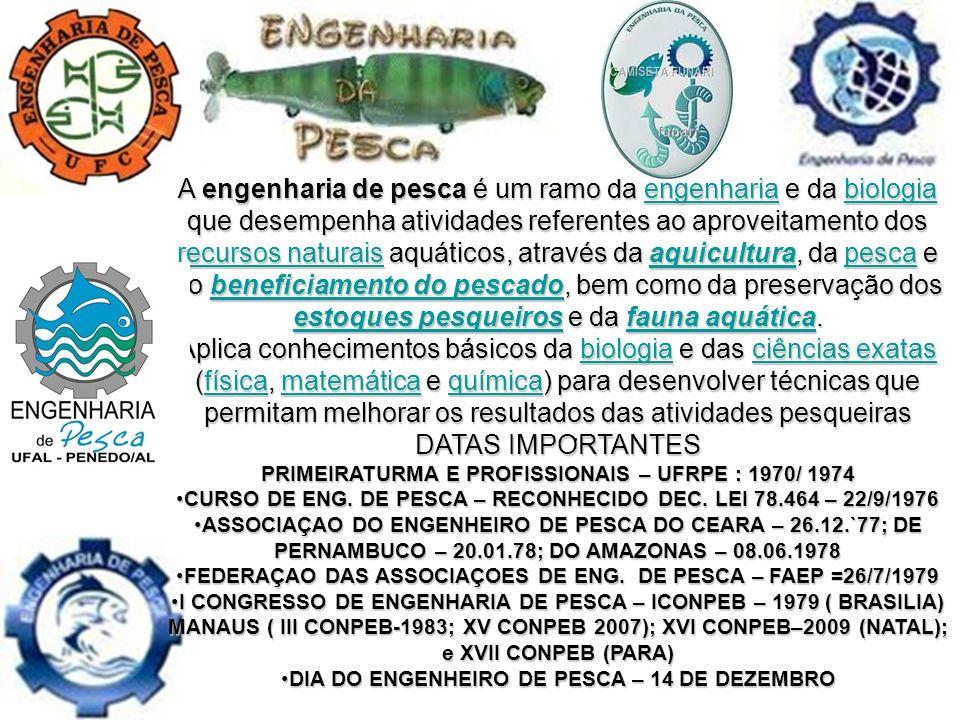 A engenharia de pesca é um ramo da engenharia e da biologia que desempenha atividades referentes ao aproveitamento dos recursos naturais aquáticos, através da aquicultura, da pesca e do beneficiamento do pescado, bem como da preservação dos estoques pesqueiros e da fauna aquática.