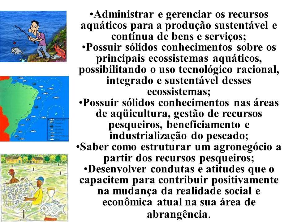 Saber como estruturar um agronegócio a partir dos recursos pesqueiros;