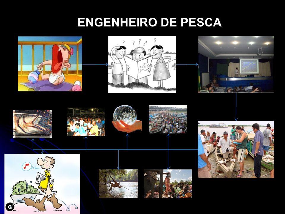 ENGENHEIRO DE PESCA