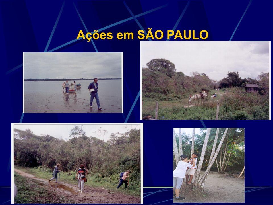 Ações em SÃO PAULO
