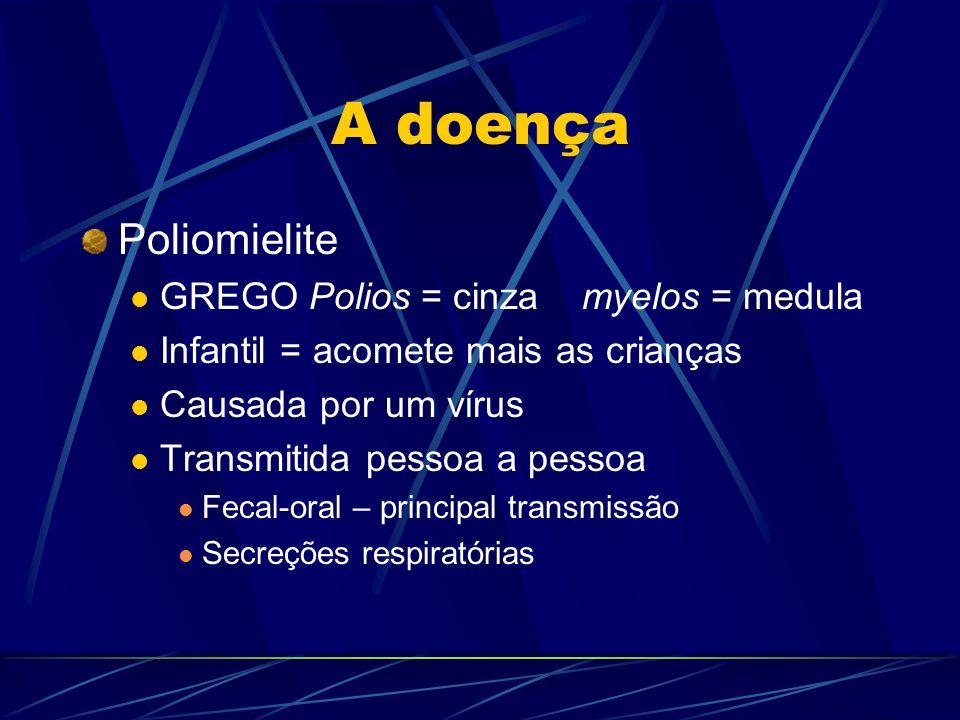A doença Poliomielite GREGO Polios = cinza myelos = medula