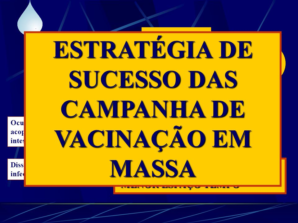 ESTRATÉGIA DE SUCESSO DAS CAMPANHA DE VACINAÇÃO EM MASSA