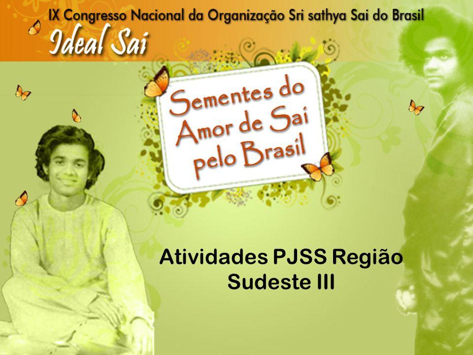 Atividades PJSS Região Sudeste III