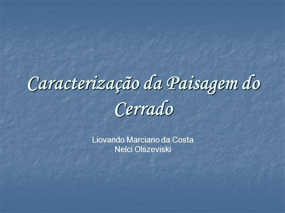 Caracterização da Paisagem do Cerrado
