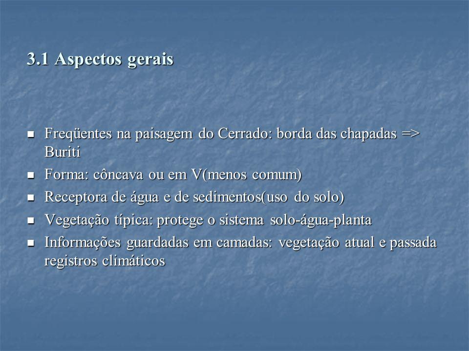 3.1 Aspectos gerais Freqüentes na paisagem do Cerrado: borda das chapadas => Buriti. Forma: côncava ou em V(menos comum)